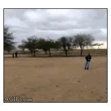 Kite-fail