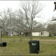 Roof-jump-trash-can