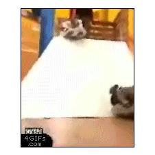 Slide-inflatable-fail